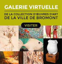 bouton_galerie_virtuelle_grand