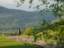 Parc équestre olympique de Bromont