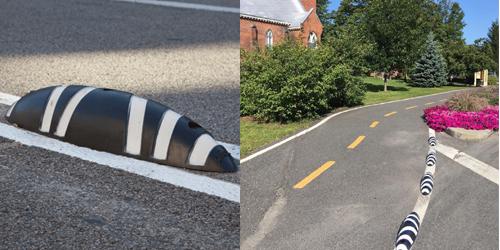 zebra-bromont