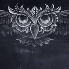 Image de Films Oiseau de nuit